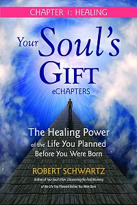 Your Soul's Gift : The Healing Power of ... by Robert Schwartz