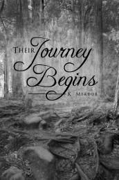 Their Journey Begins by Meador, K