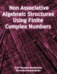 Non Associative Algebraic Structures Usi... by Smarandache, Florentin