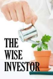 The Wise Investor by McIlroy, Mark