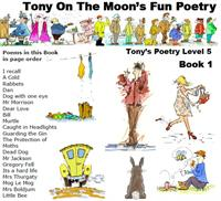 Tony on the Moon's Fun Poetry 5-1 : Fun ... Volume Level 5 Book 1 by Moon, Tony, James