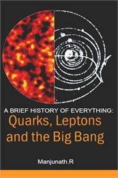 A Brief History of Everything : Quarks, ... by Ramu, Manjunath