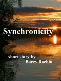 Synchronicity by Rachin, Barry